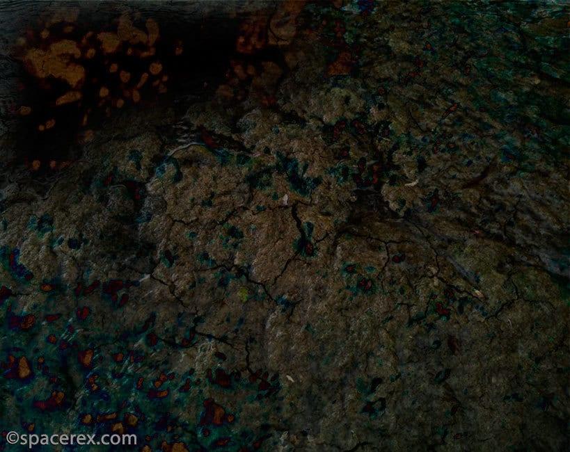 MossWound160130 Garden Planet #spacerex